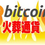再び大炎上する火葬通貨!ビットコイン不信が業界に大きなヒビを入れる!