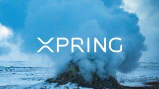 リップルがXRP採用の企業やプロジェクトに対し援助する「Xpring」を発表